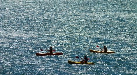 Wellington - Couchsurfing, Te Papa und der 360 Grad View